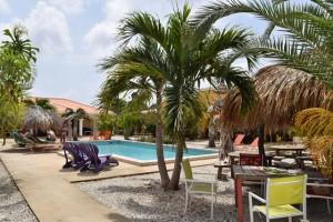 Duikvakantie Bonaire Djambo vakantieduiker zwembad