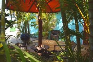 Duikvakantie Bonaire Tropicana appartments vakantieduiker tuin