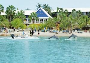 Duikvakantie Curacao vakantieduiker lions dive