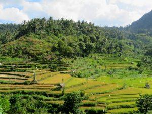 Duikvakantie Bali Eiland van de Goden