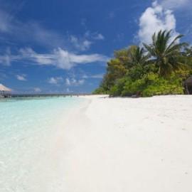 Duikvakantie Malediven - Vakantieduiker