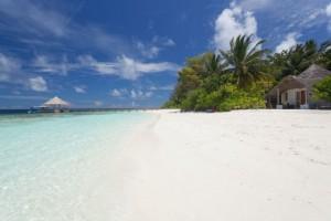 duikvakantie malediven bathala_island vakantieduiker zee