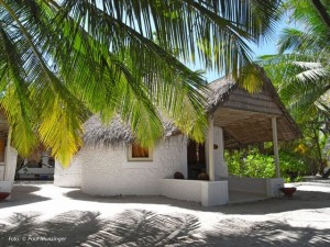 duikvakantie malediven bungalow_outside vakantieduiker