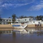 Manta's en walvishaaien Tofo Mozambique - Vakantieduiker