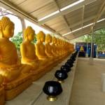 Thailand Phuket Palm Garden Resort