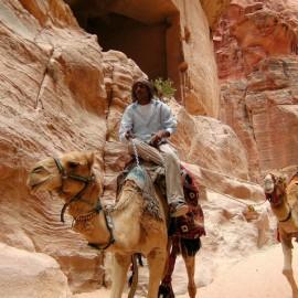 Duikvakantie en cultuur single groepsreis Jordanië - Vakantieduiker