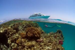 marsa nakari boat duikvakantie zuiden egypte vakantieduiker