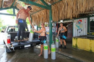 Duikvakantie Bonaire Buddy dive resort dive and drive vakantieduiker