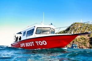 Duikvakantie Bali duikboot vakantieduiker